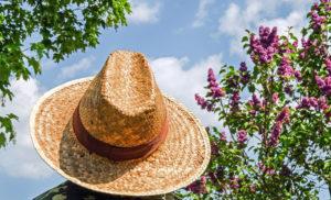 Il cappello compare abbastanza di frequente nei sogni. Il suo significato  può essere attribuito a  autorità 689b9c25010a